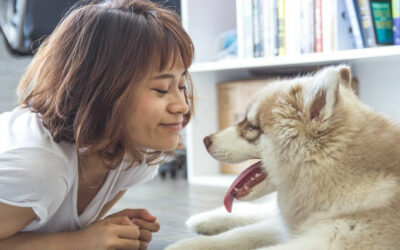Dog People Live Longer. But Why?