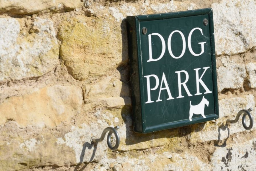 The Best Dog Parks in Frederick for Active Pets and People