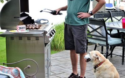 How to Have a Dog-Friendly Memorial Day in Frederick!